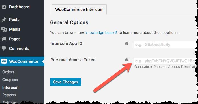 Paste Personal Access Token
